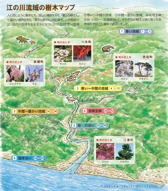 江の川樹木図鑑_2